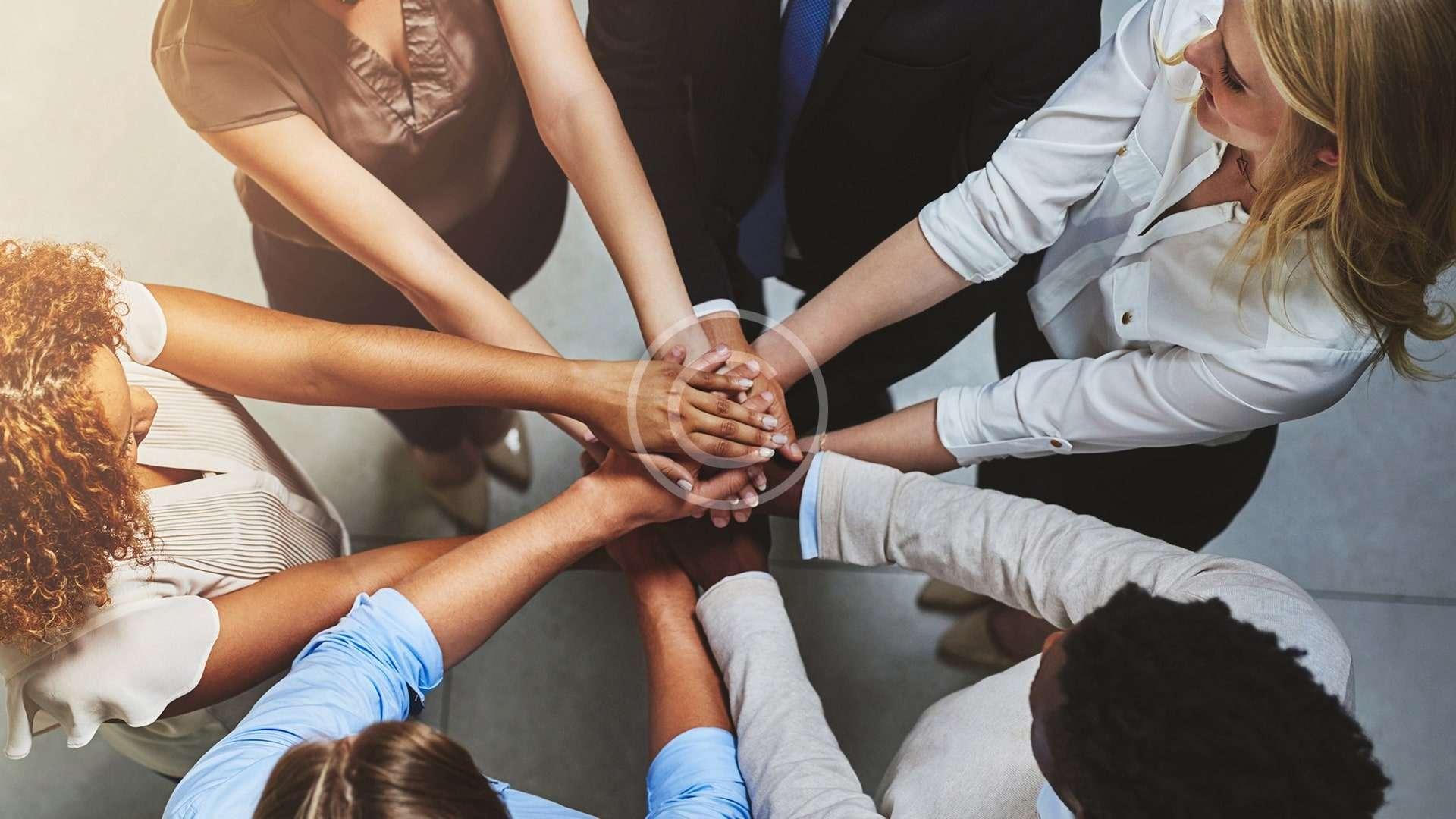 Basic Principles of Management & Team Work